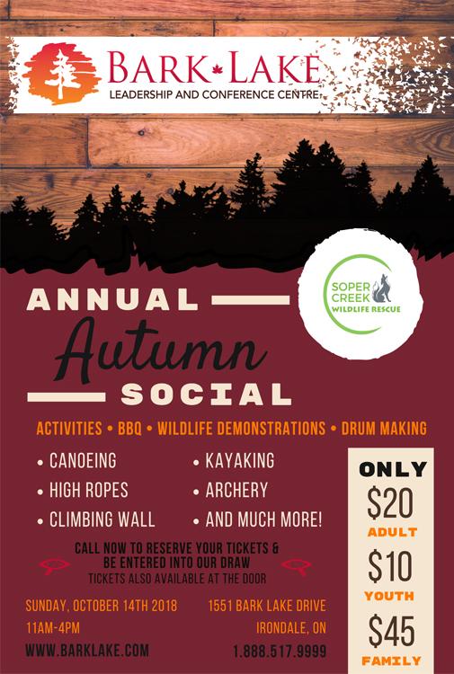 autumn social poster